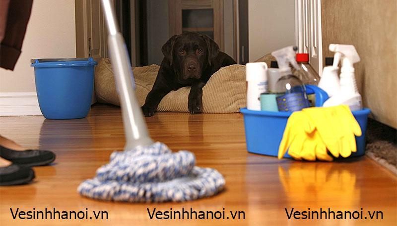 Hình ảnh vệ sinh sàn nhà